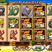 sky3888-wild-gambler-slots